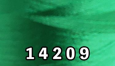 14209
