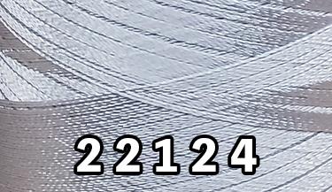 22124