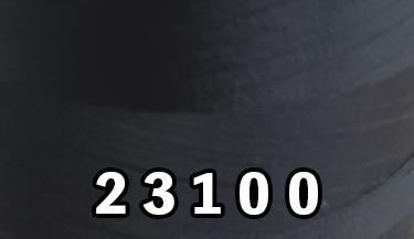 23100