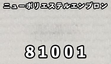 81001