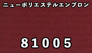 81005