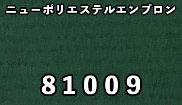 81009