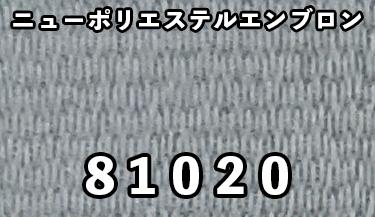 81020